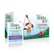 Herbária Herba Kids Gyerektea - erdei gyümölcs (20 filter)