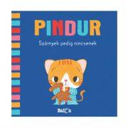 Pindur - Szörnyek pedig nincsenek - Interaktív készségfejlesztő lapozó
